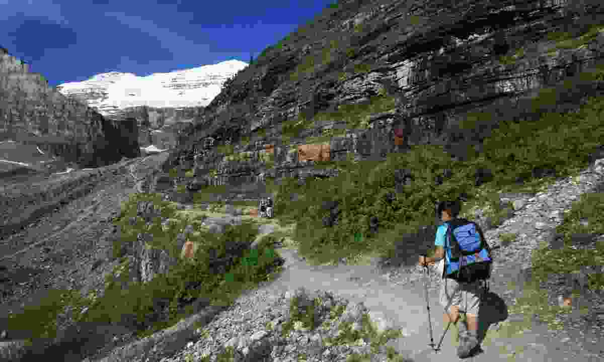 Hiker on the Plain of Six Glaciers path (Shutterstock)