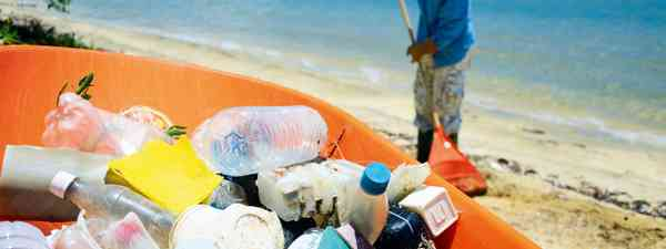 Cleaning up the beach (Photo 26776811 © Roi Brooks - Dreamstime.com)