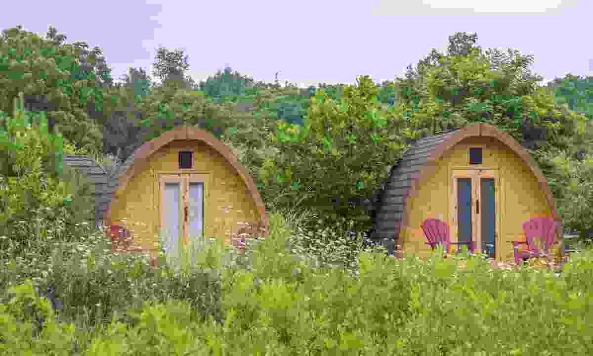 Glamping huts (Dreamstime)