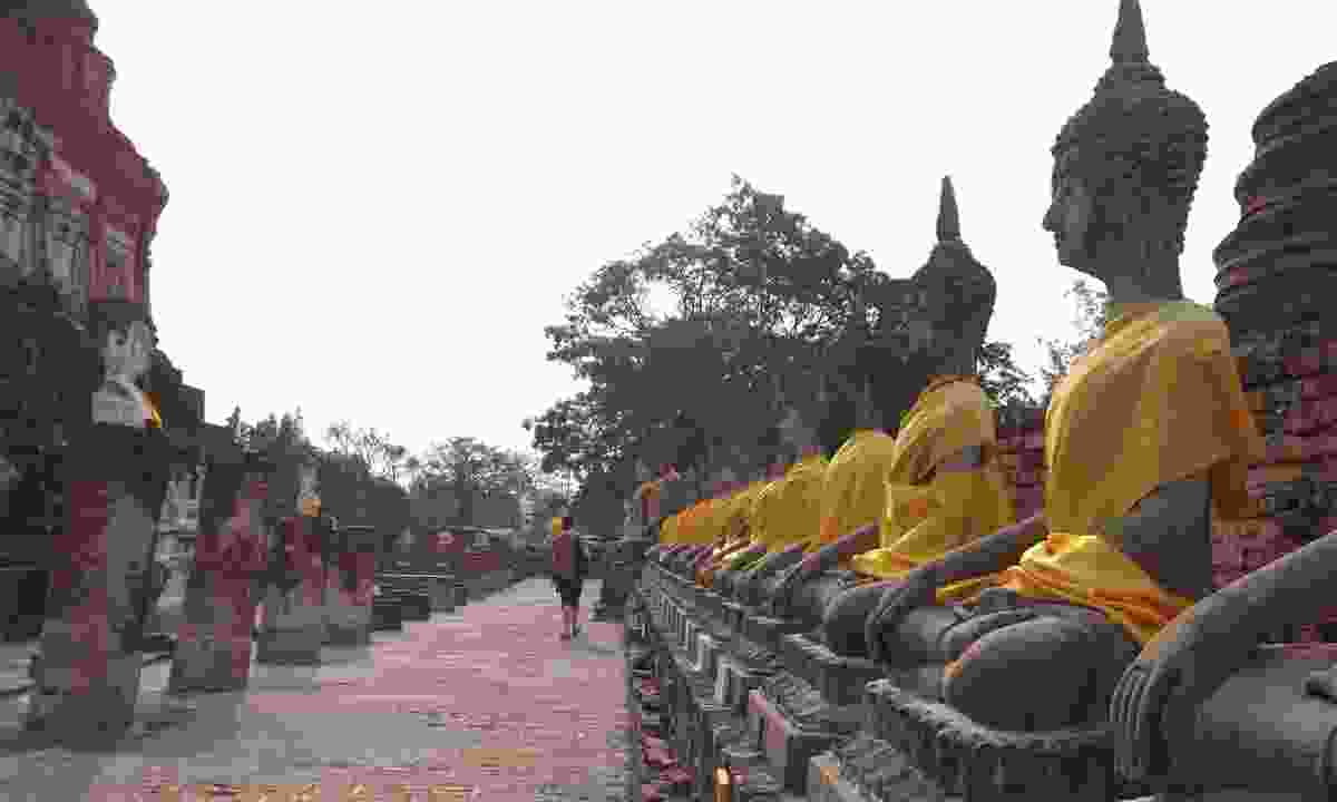 Rows of buddhas at Ayutthaya, Thailand (Rickshaw travel)