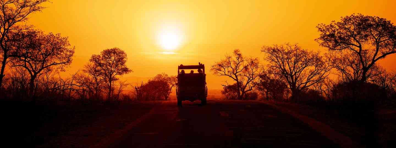 The ultimate African safari  (Shutterstock)