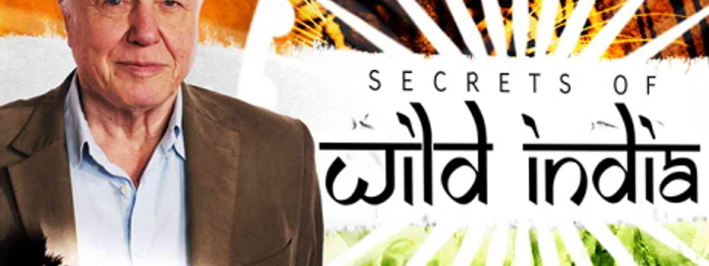 The Secrets of Wild India (Icon Films)