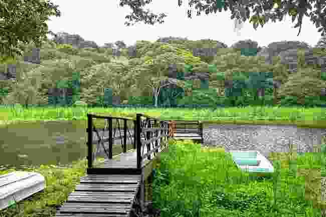 (Rio Coco UNESCO Geopark)