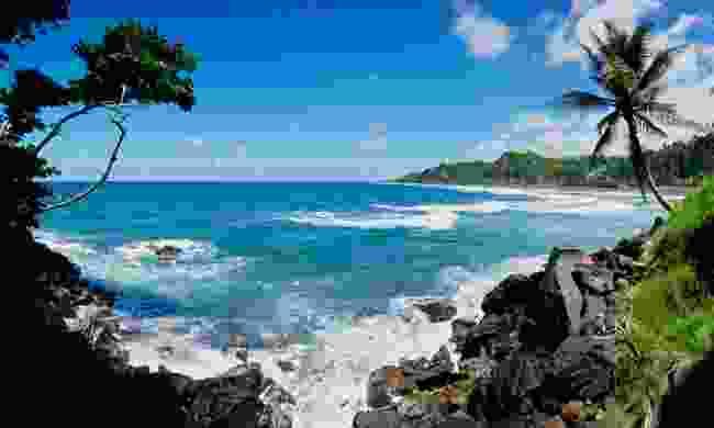 Coastal walk in Saint Vincent (Shutterstock)