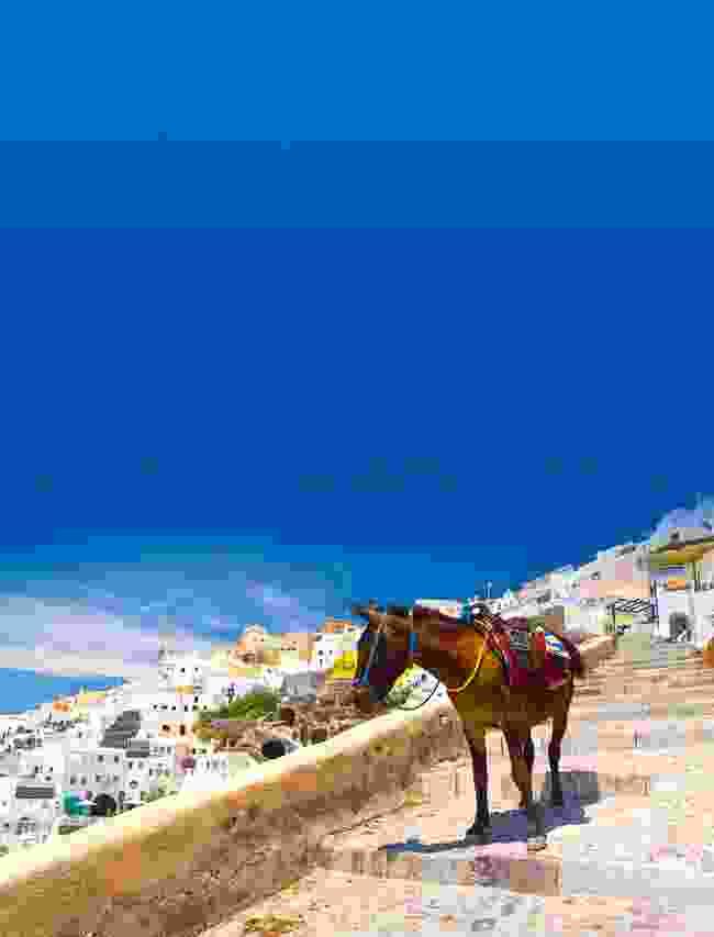 Donkey taxis in Santorini, Greece (Shutterstock)