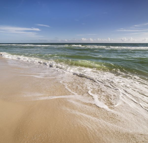 If you like this, try... the Florida Trail. Trace sections of this 2,250km path span the state from Gulf Islands National Seashore to Big Cypress National Park.