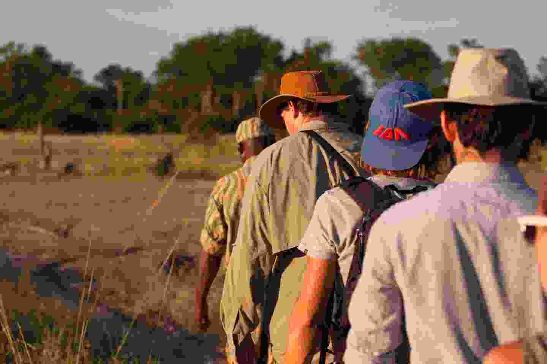 A walking safari in South Luangwa NP, Zambia (Shutterstock)