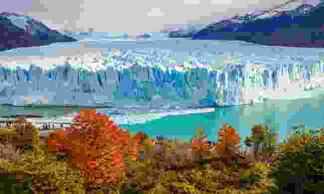 Perito Moreno Glacier in Argentina (Shutterstock)