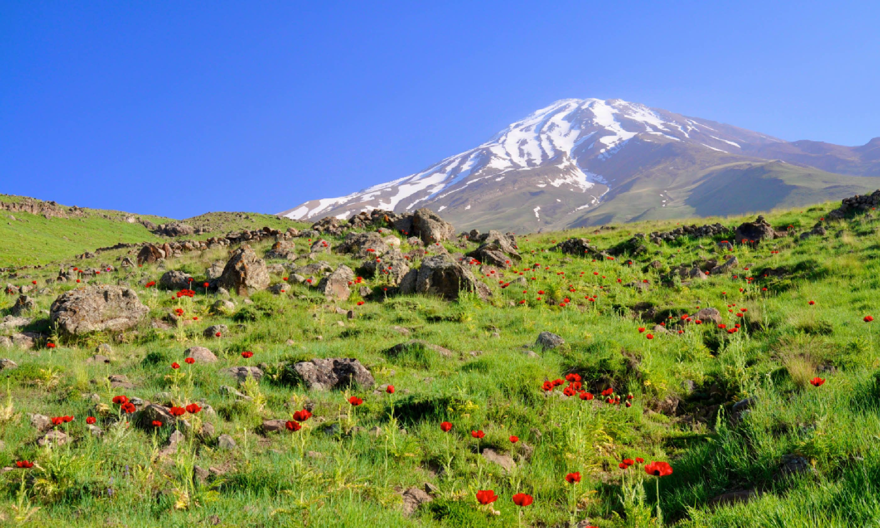 Mt Damavand (Shutterstock)