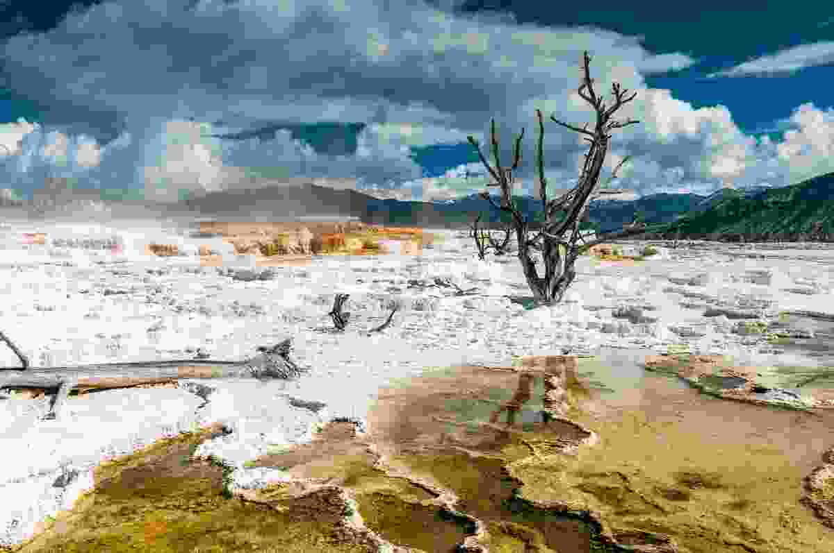 Mammoth Hot Springs, Yellowstone National Park (Shutterstock)