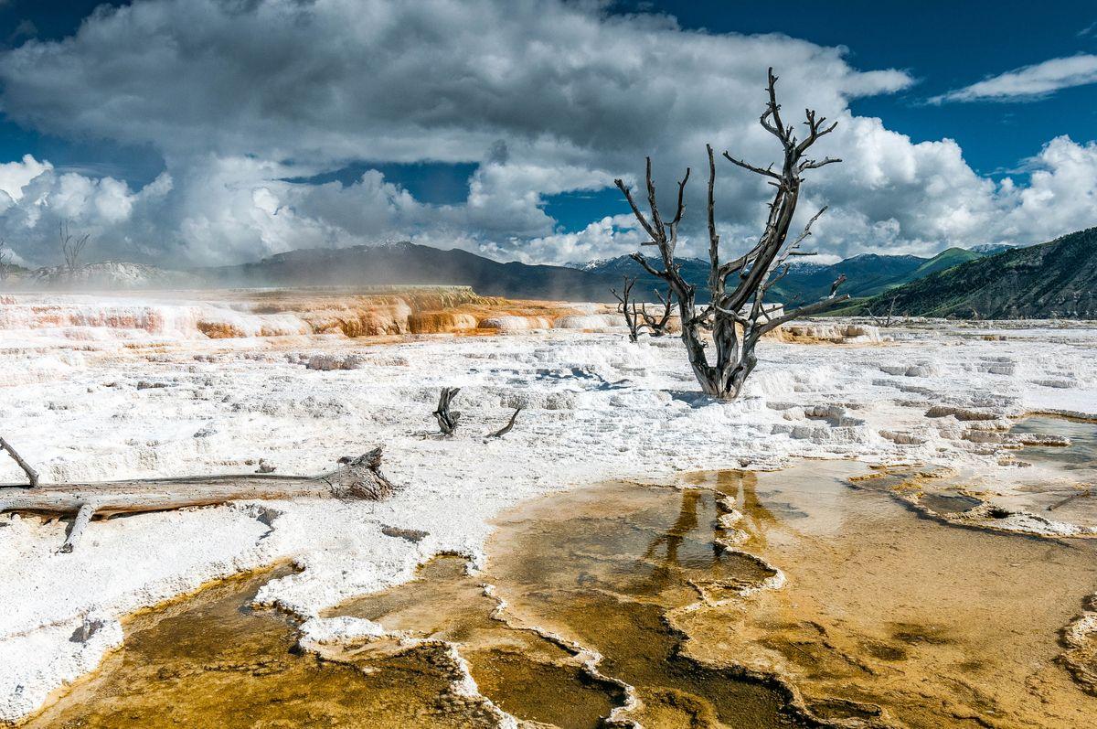 Winter In Yellowstone National Park Wanderlust