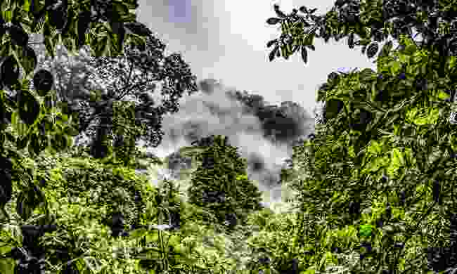 Cloud forest of the Chocoyero-El Brujo Nature Reserve (Shutterstock)
