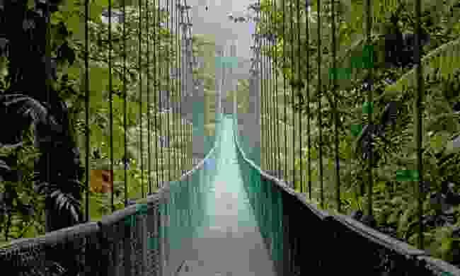 A hanging bridge in the Monteverde Cloud Forest (Shutterstock)