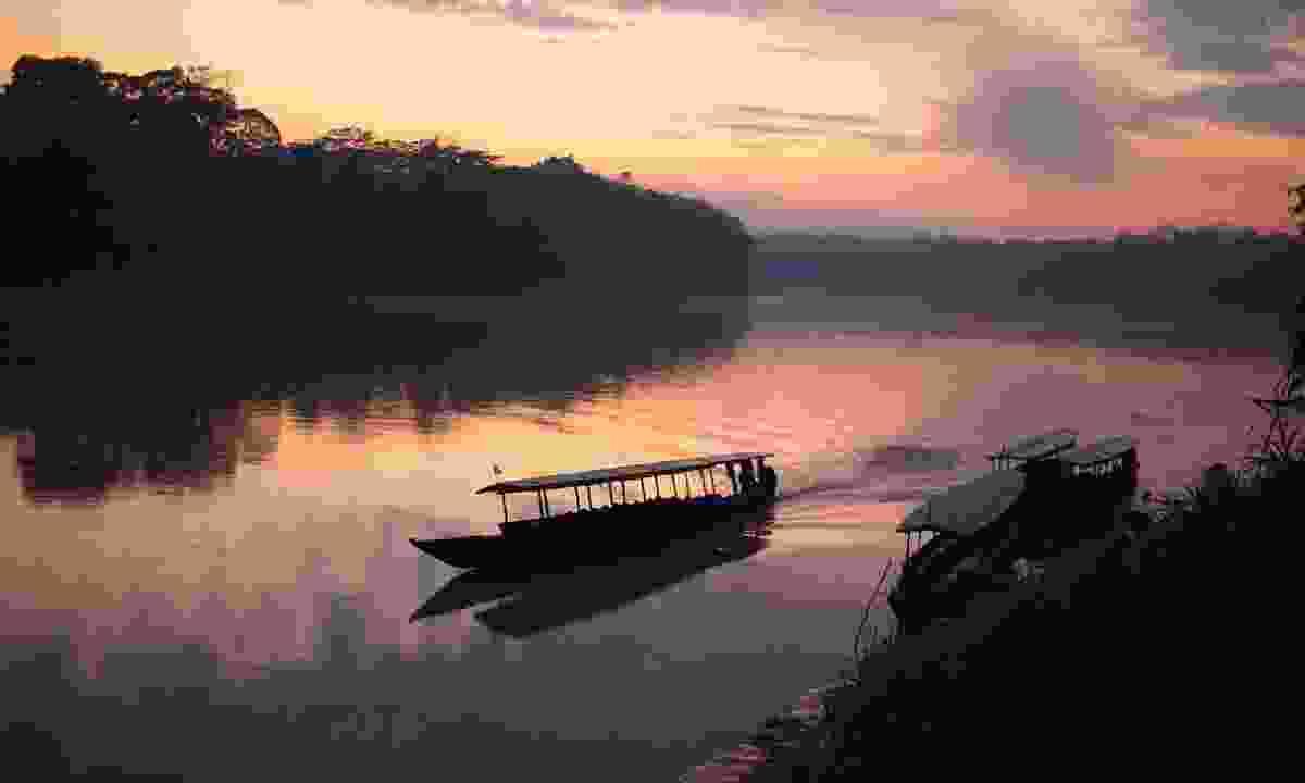 Amazon Rainforest in eastern Peru. (Shutterstock)