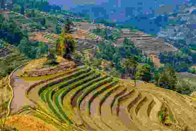 Rice terraces of Yuanyang, Yunnan (Shutterstock)