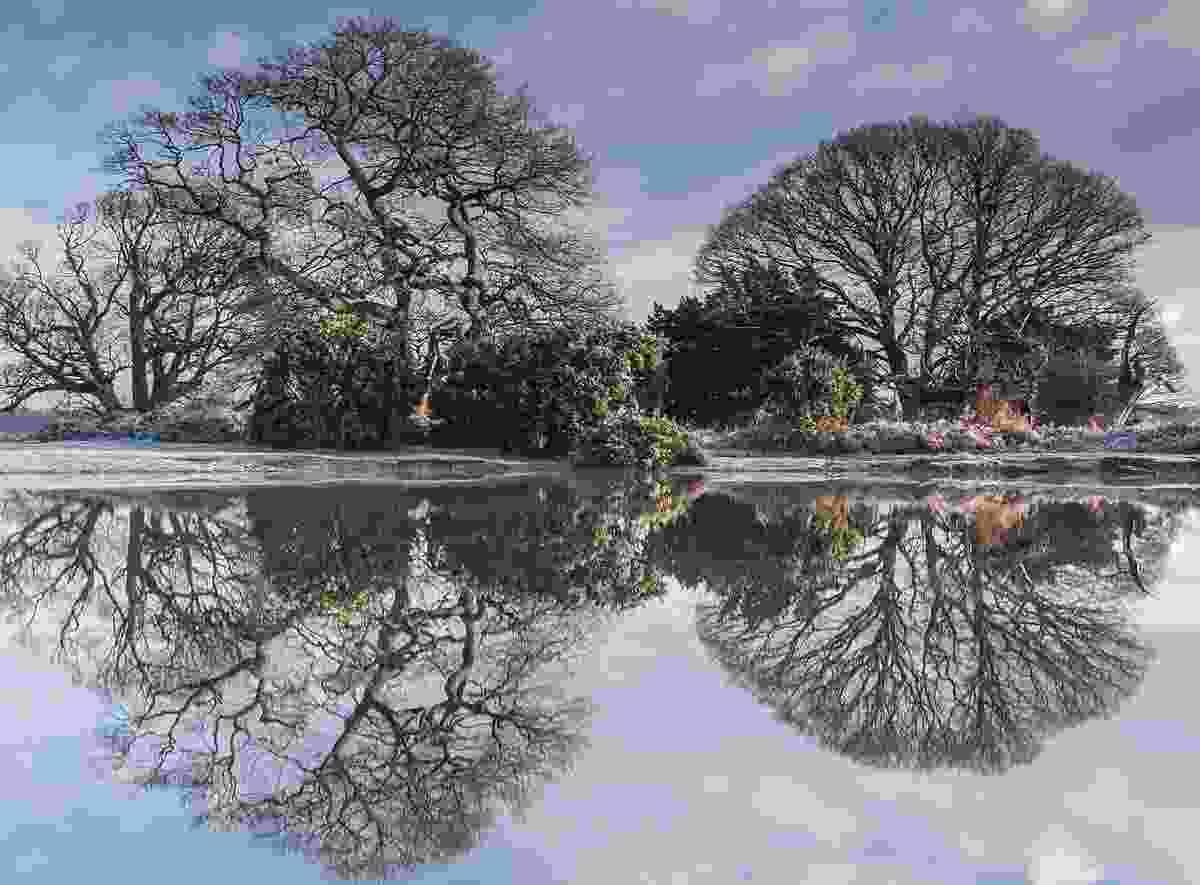 Mogshade Pond (Matthew Pinner)