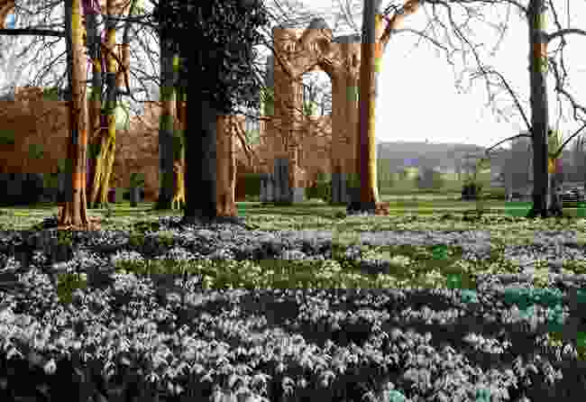 Walsingham Abbey, Norfolk (Walsingham Estate)