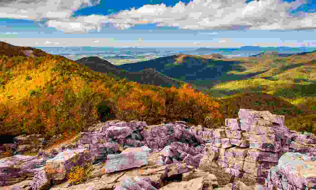 The Appalachian Trail in Fall (Shutterstock)