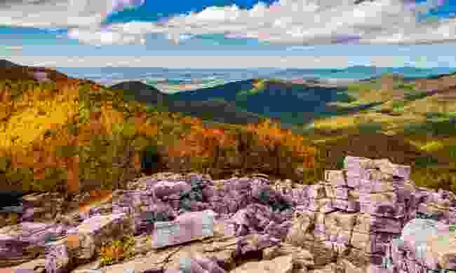 The Appalachian Trail in Fall (Shutterstock)