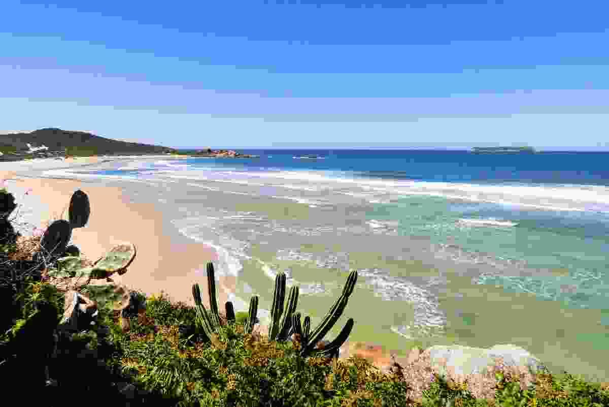 Praia da Galheta beach in Florianopolis, Brazil, during low season. Not too shabby... (Shutterstock)