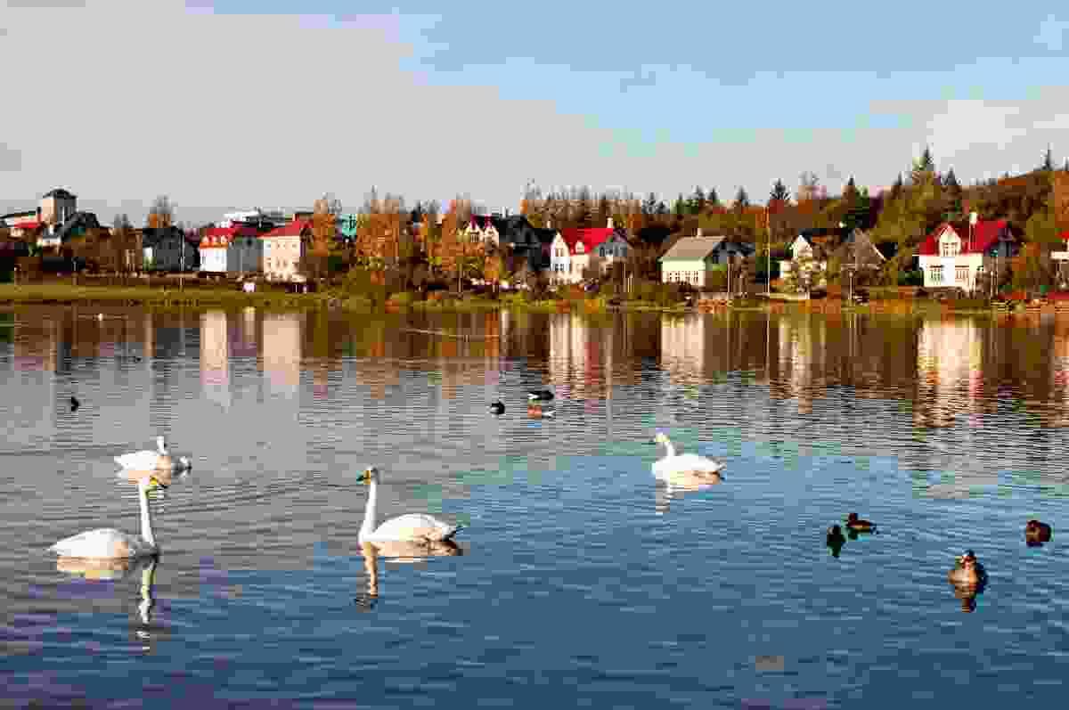 The peaceful centre of Reykjavik, Tjornin Lake (Dreamstime)