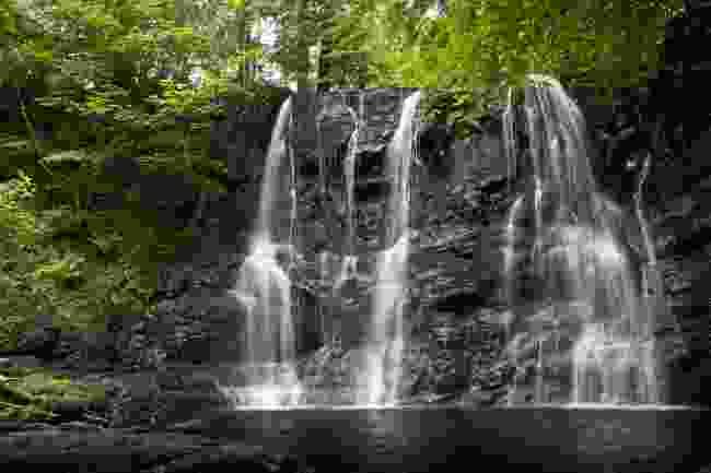 Glenariff Falls (Martin Dorey)