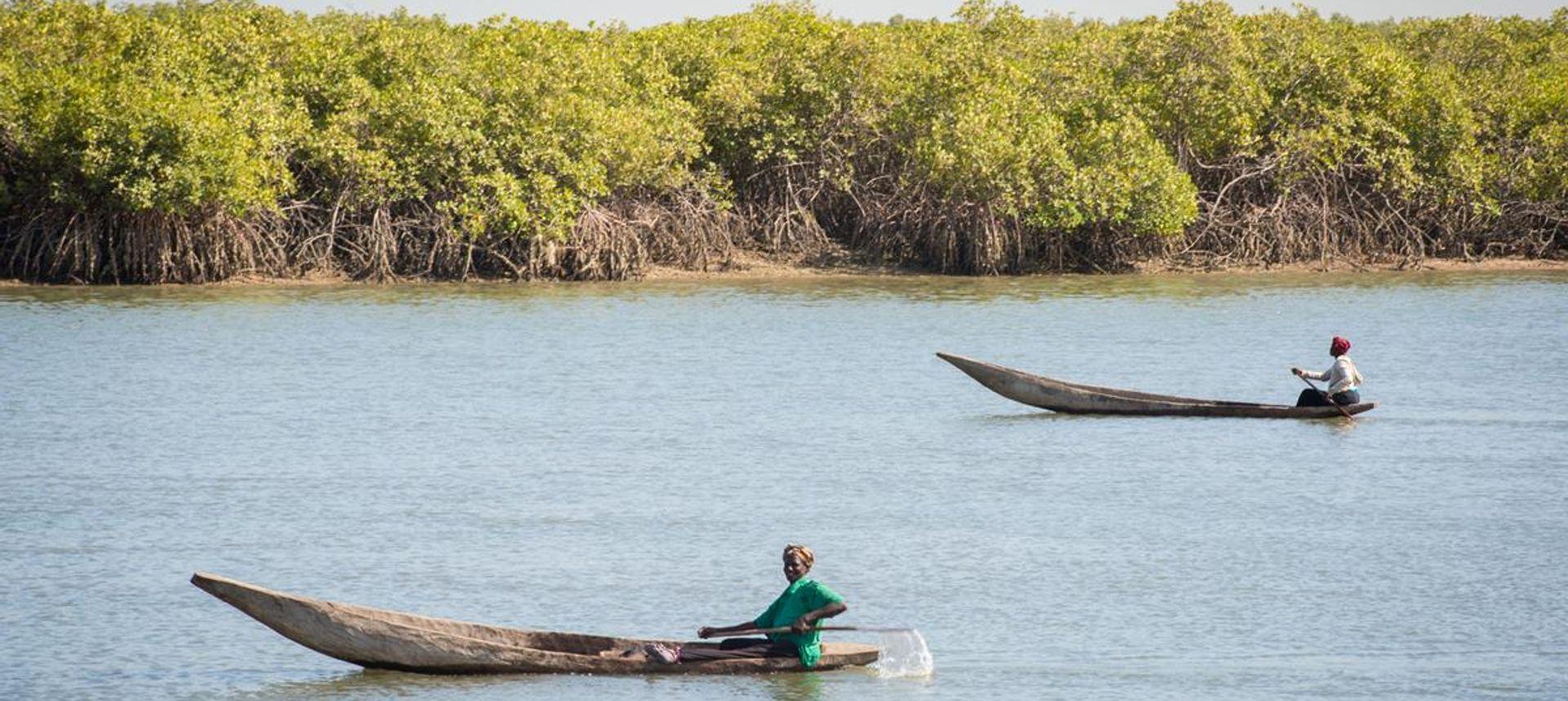 Overlooking Badimayo, Inland Gambia (Lyn Hughes)