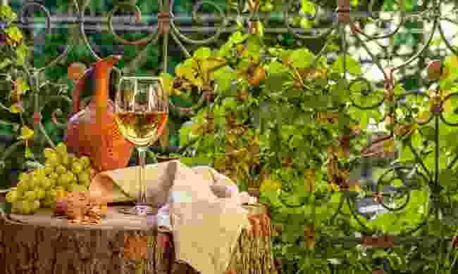 The local wine in Tbilisi is orange (Shutterstock)