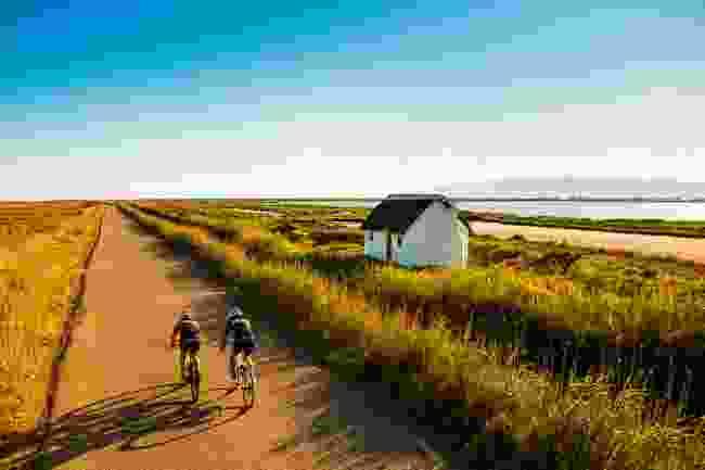 Cycle around Delta de l'Ebre, Spain (Patronat de Turisme de la Diputació de Tarragona - Terres de l'Ebre)