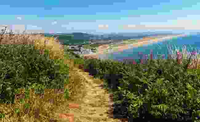 Enjoy the pristine beach of Pendine Sands