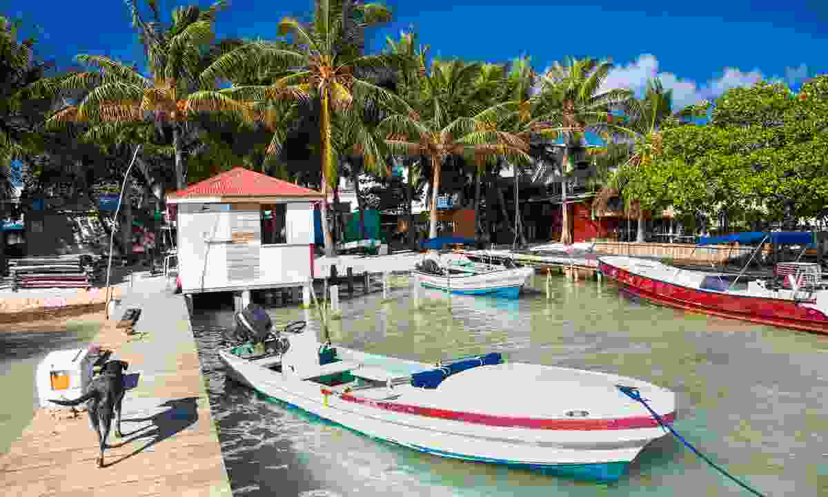 Caye Caulker in Belize (Shutterstock)