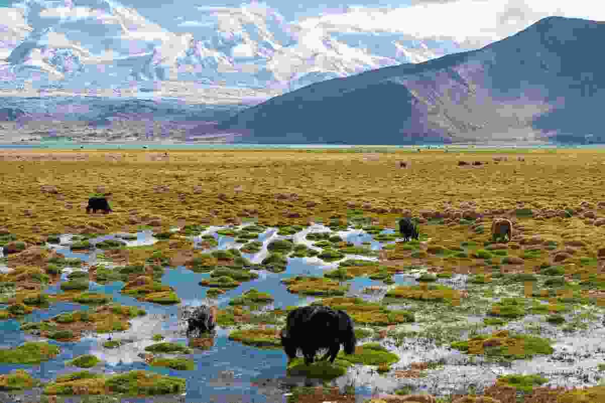 Karakul lake, Xinjiang Province, China (Dreamstime)