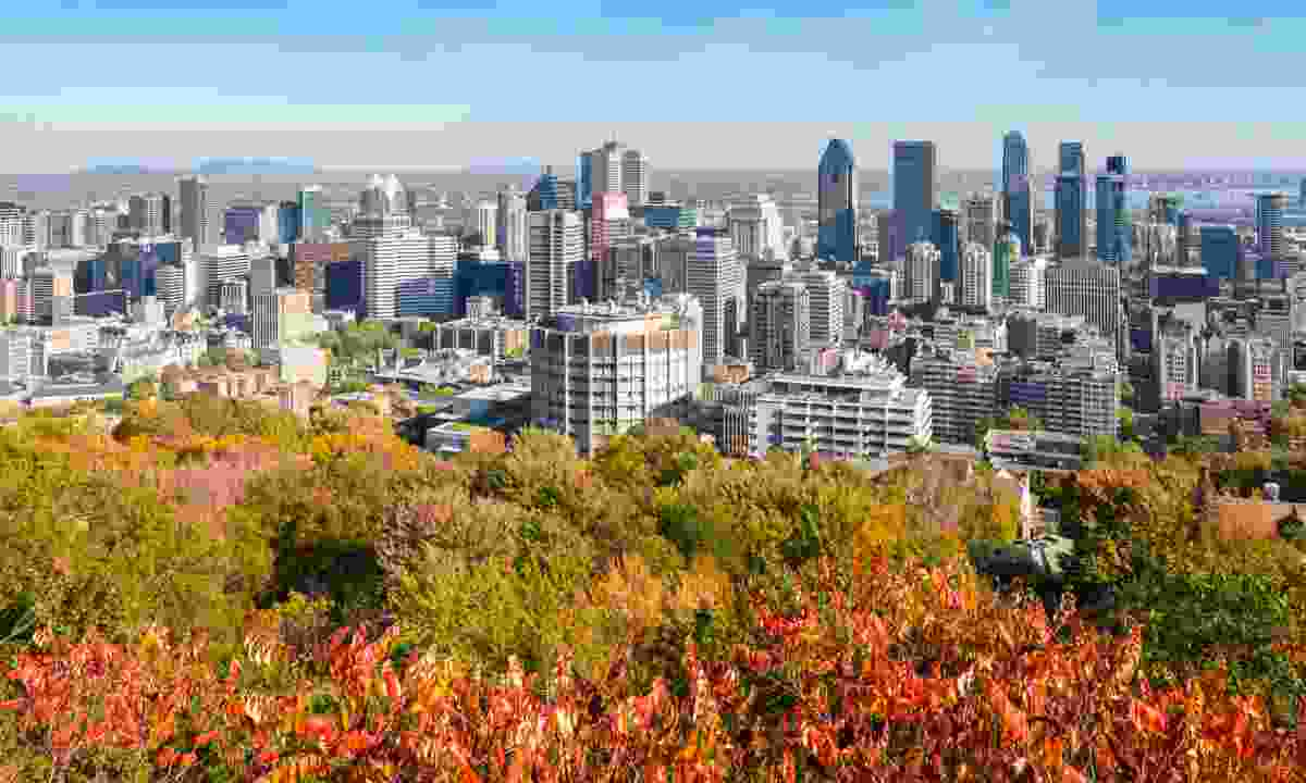Montreal skyline from Mount Royal Park (Dreamstime)