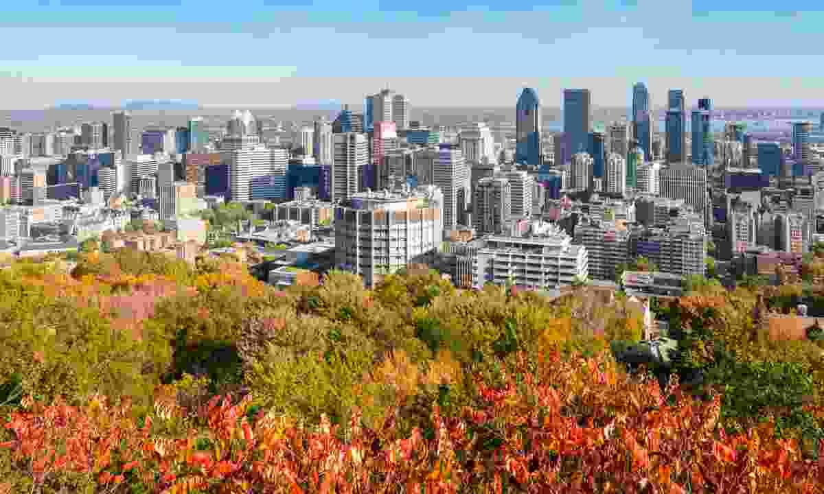 Montreal skyline from Mount Royal Park (Dreamstime)