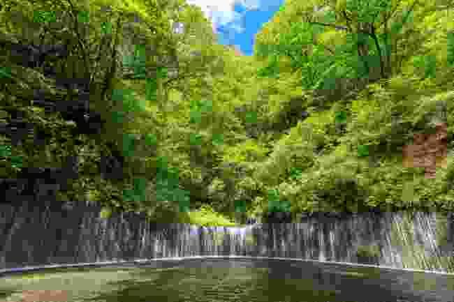 Shiraito Falls, Japan (Shutterstock)