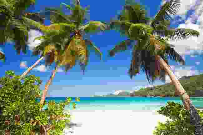 Takamaka beach, Mahe Island (Dreamstime)