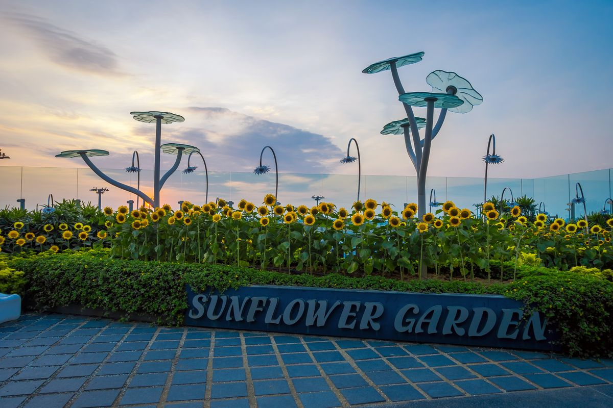 11 extraordinary things to do in Changi Airport | Wanderlust