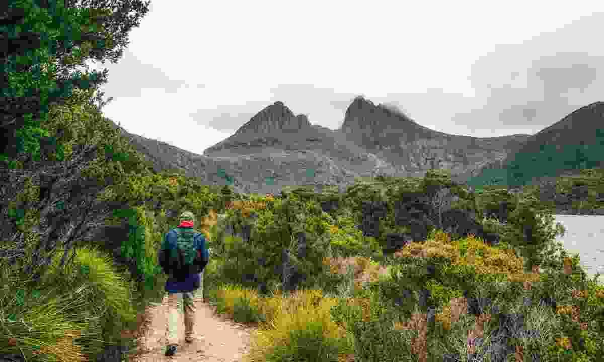 Walking alongside  Dove Lake, towards Cradle Mountain (Dreamstime)