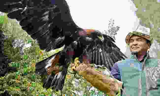 Coming face to beak with Arstan's golden eagles at Bokonbaevo (Mark Stratton)