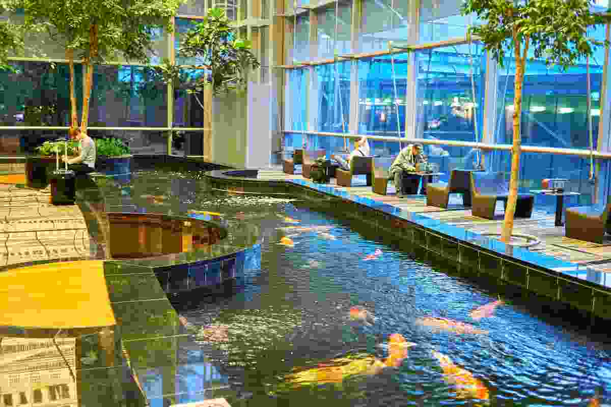 Not a pool for people, but the Koi Pond. Another water feature at Changi Airport, Singapore (Shutterstock)