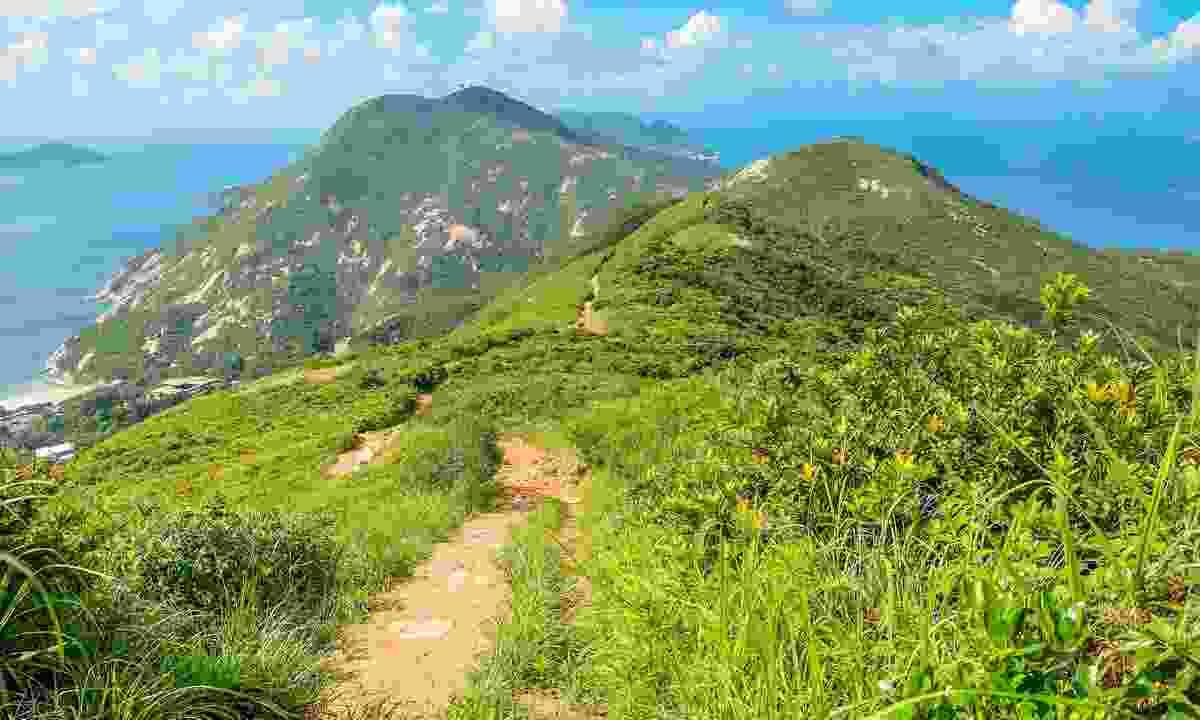 The Dragon's Back Hike (Shutterstock)
