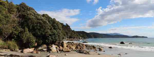 Stewart Island (Phoebe Smith)