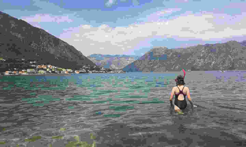 Swimming in the Bay of Kotor (Dreamstime)
