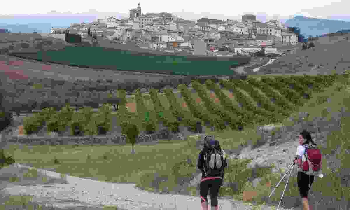 Pilgrims walking the Way of St James (Dreamstime)