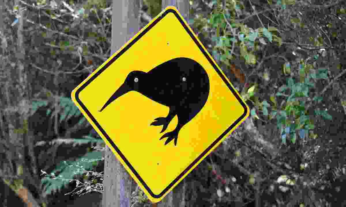 Kiwi sign (Phoebe Smith)