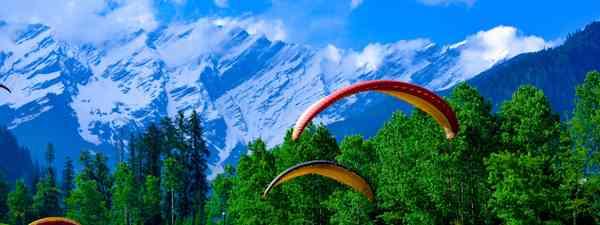 Adventuers in India (Shutterstock)