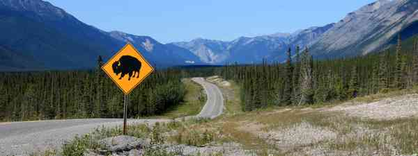 The Alaska Highway in Summer (Destination British Colombia, Andrew Strain)