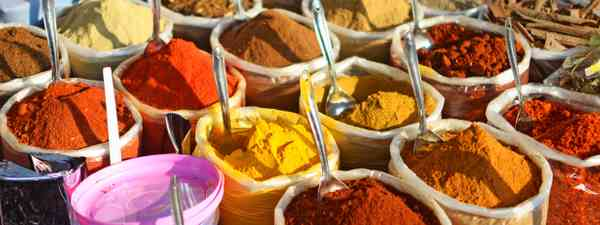 Indian spices. (Shutterstock)