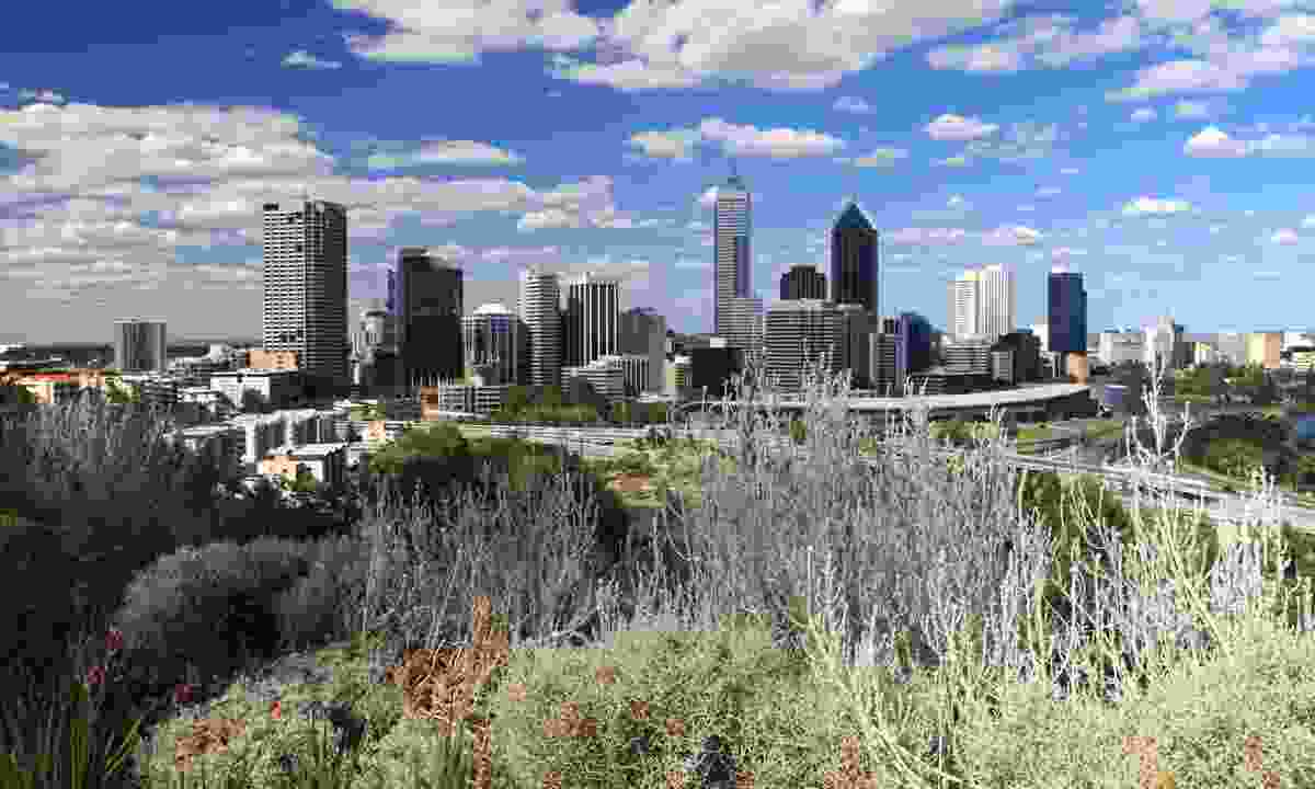 The Perth skyline from Kings Park (Dreamstime)