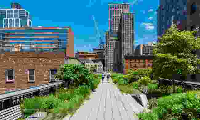 High Line Park, New York (Dreamstime)